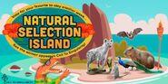 Natural selection island