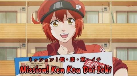 『Lyrics AMV』Hataraku Saibou OP Full - Mission! Ken・Kou・Dai・Ichi / Red, White, Killer T, Macrophage