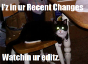 Lolcat watching RC.png