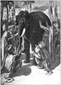 Blind men and elephant4.jpg