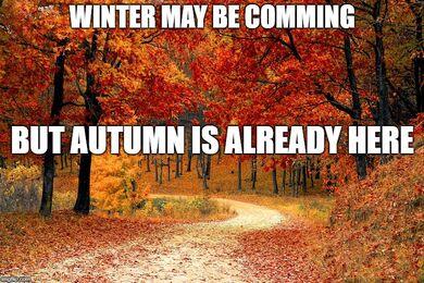 Autumn is here.jpg