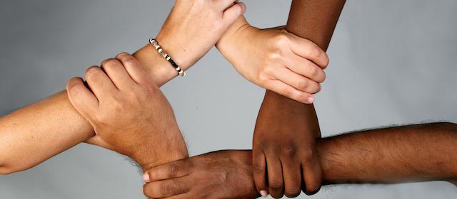 Die Vielfalt auf FANDOM
