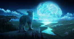 Water-wolves-wallpaper-1.jpg