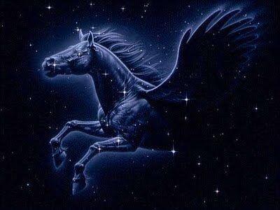 PegasusPM.jpg