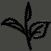 USER-TheRequiemEmpire signature tea.png