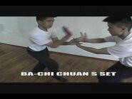 八極拳-劈掛掌 Black Belt Demo (Wu Tang USA) part - 2 - 3 continue 3 - 3 .....