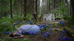 OUAT701Incidente.png