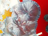 Cristalizaciones de Zinc