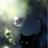 Blossomforeveralways's avatar