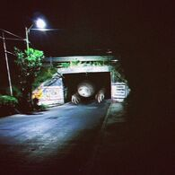 Bridge Worm (Canon)/Lambdawg