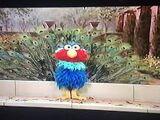 Elmo Peacock
