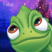 Pascal Promotional Headshot.jpg