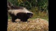 Barney & Friends Skunk