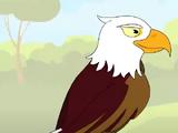 Eagle (HooplaKidz)