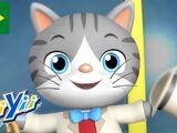 Mr. Cat (KiiYii)