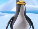 Penguin (Monkey See Monkey Do)