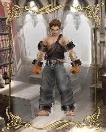 Protagonist (Valhalla Knights)