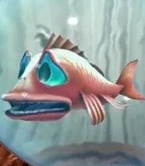 Gasper the Fish.jpg