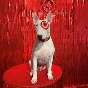 Bullseye press.jpg