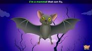 Appuseries Bat