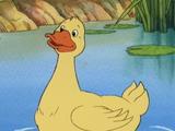 Duck (Little Bear)