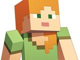 The Player (Minecraft)