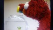 Elmo Giving Dorothy Some Fish Food