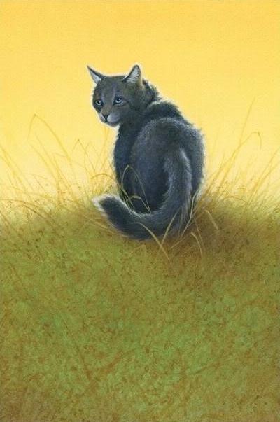 Cinderpelt (Warrior Cats)