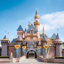 Disneyland.castle.jpg