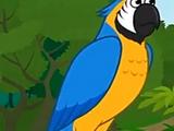 Parrot (Little Fox)