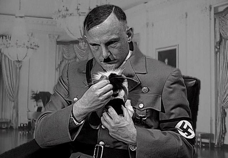 Adolf Hitler (A Kitten for Hitler)
