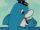 Delfy the Dolphin