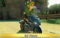 Link Mario Kart 8
