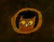 Joseph Had a Little Overcoat Owl.PNG