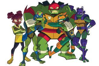 RTMNT The Turtles.jpg