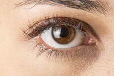 Brown eyes.jpg