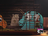 Barney (The Amazing World of Gumball)