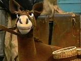 Iago (Donkey)
