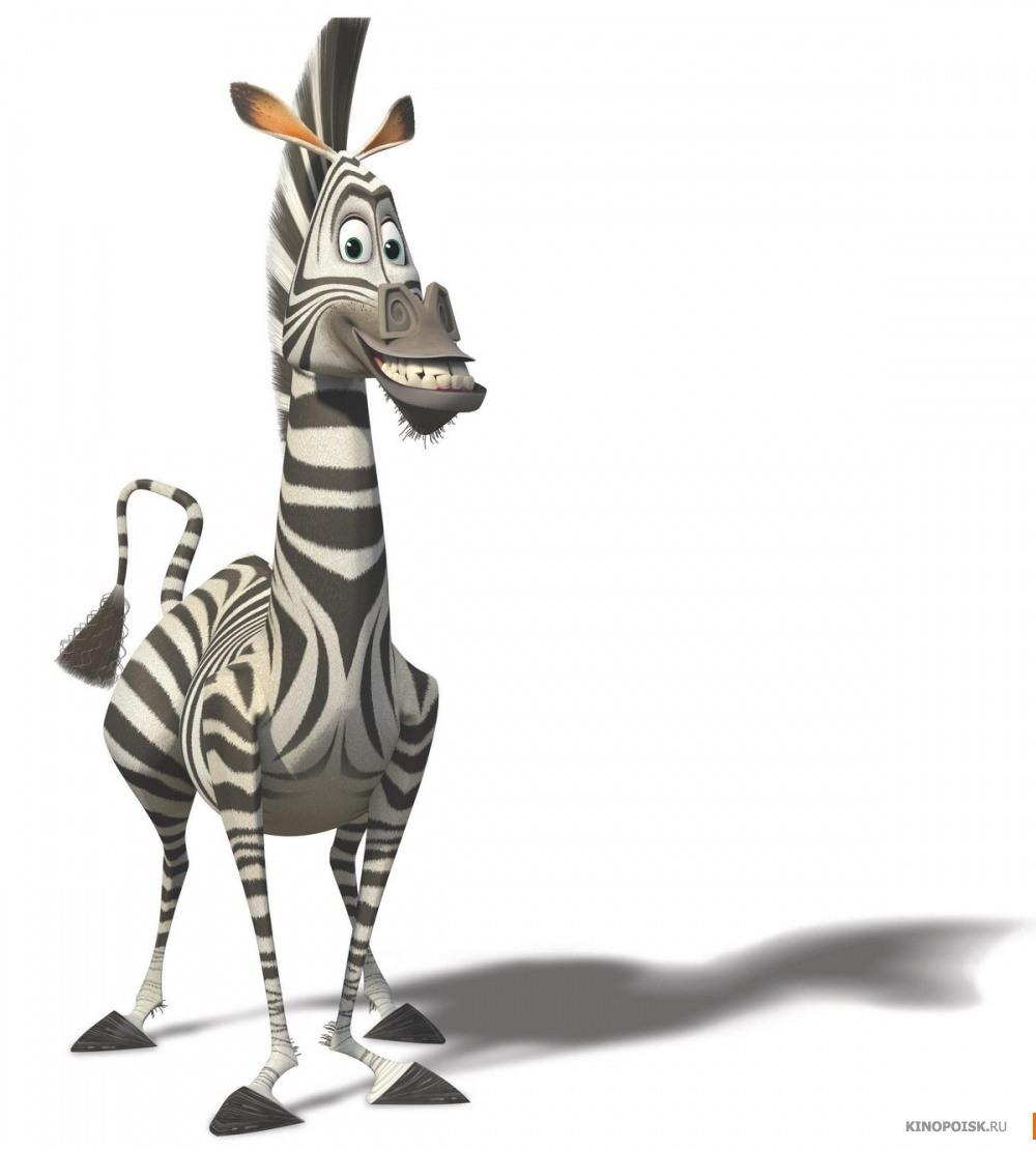 Marty (Madagascar)