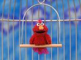 Elmo Bird