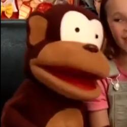 Mango the Monkey