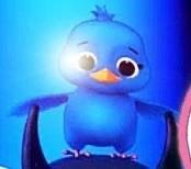 LBB Bird