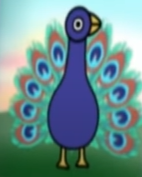 Peacock UPDATED (Elmo's World).png