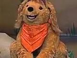 Ginger the Dog