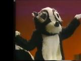 Skunk (Barney and the Backyard Gang)