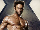 Wolverine (X-Men Movies)
