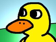 The Duck.jpeg