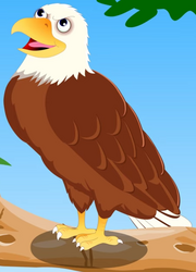 AppuSeries Eagle.png