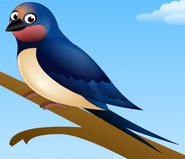 Appuseries Barn Swallow