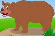 AppuSeries Bear.png